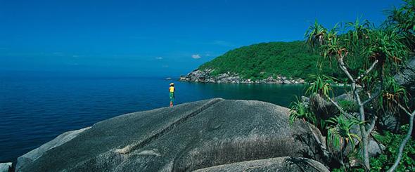 Bedarra Island Queensland Australia